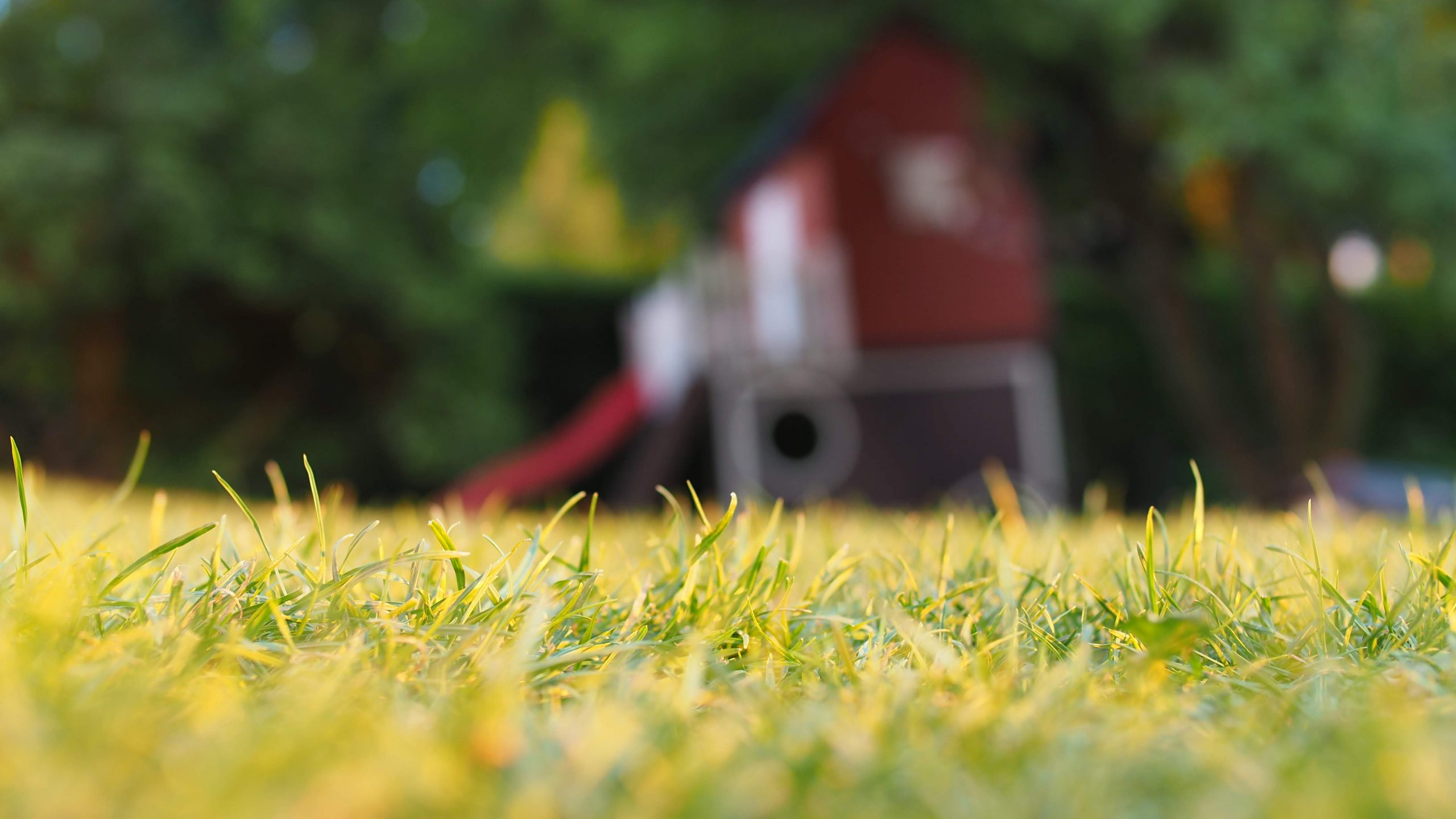 best local lawn care company in Rossville mowing the lawn